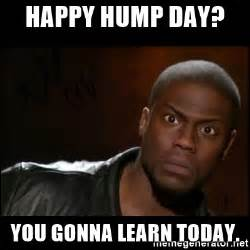 Happy Hump Day Meme - happy hump day you gonna learn today kevin hart wait