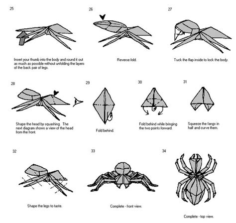 Origami Spider Diagram - spider diagrams 3 craft ideas for