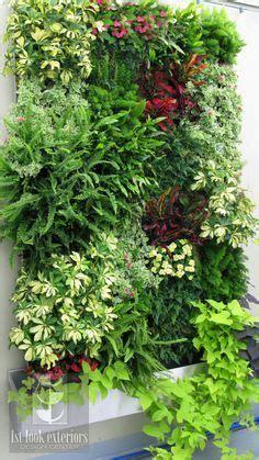imagenes de jardines verticales pequeños 50 im 225 genes de los jardines verticales m 225 s impactantes