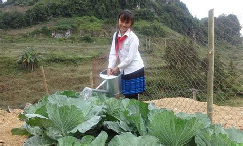 Viet Garden Gardening In The Highlands Of