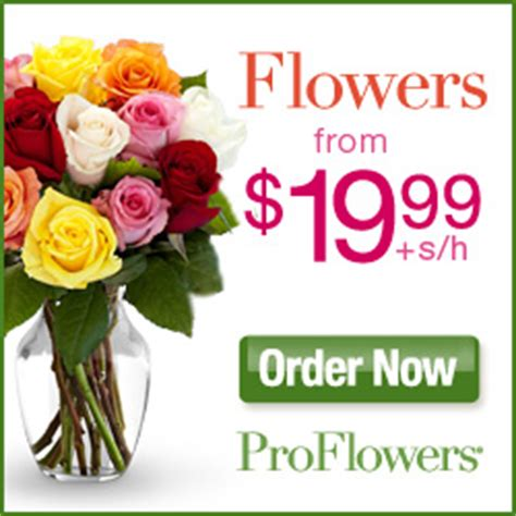 Proflowers Free Vase Promo Code by Proflowers Coupon Code 25 Coupons For March 2015