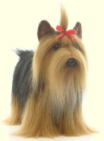 stuffed animal yorkie plush stuffed yorkie terrier