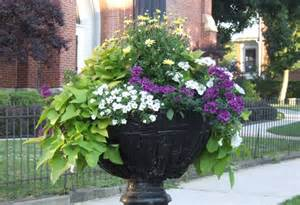 1000 images about gardening on pinterest container