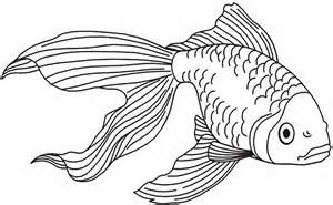 fish drawing best images collections hd for gadget