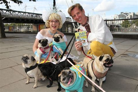rescue pugs manchester a pack of rescue pugs are coming to meet you at this manchester festival manchester