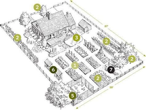 homestead layout design start your own backyard homestead the backyard