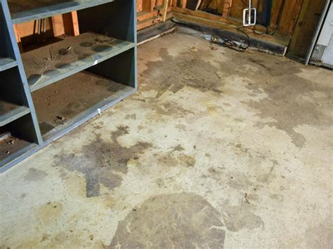 Great Garage Floor Paint Ideas : Iimajackrussell Garages