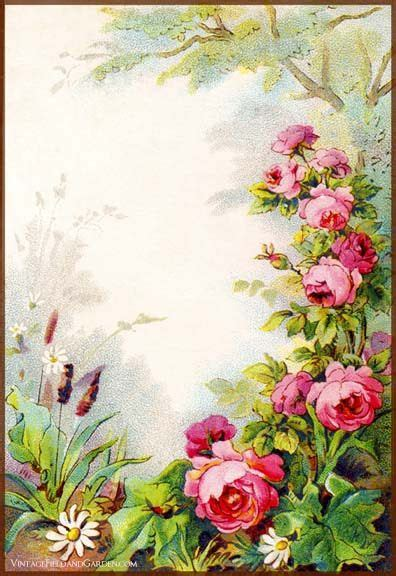 printable victorian flowers 1000 images about frames on pinterest vintage labels