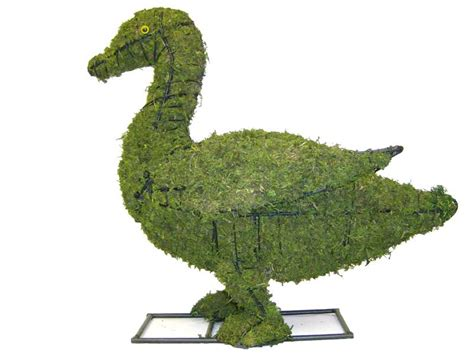 animal topiary frame duck animal topiary frame
