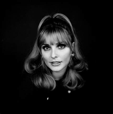 picture of sharon tate 301 moved permanently