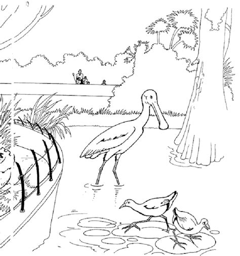zoo coloring page to print free printable zoo coloring pages for kids