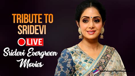 sridevi news tribute to sridevi sridevi evergreen movies live