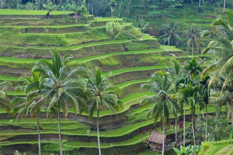 best attractions in 10 top tourist attractions in indonesia touropia travel