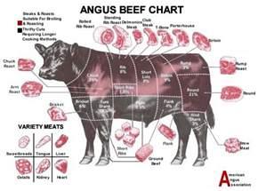 beef cuts chart grill thrill