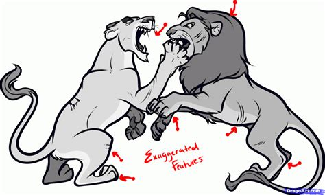 how to to fight how to draw fighting lions draw fighting animals step by step safari animals