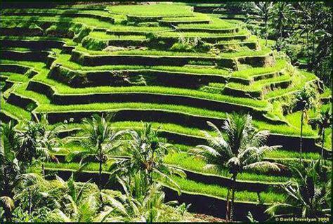 Landscape Definition Tagalog Magagandang Tanawin Sa Pilipinas