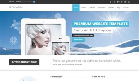 bootstrap themes detector 30 useful responsive bootstrap templates