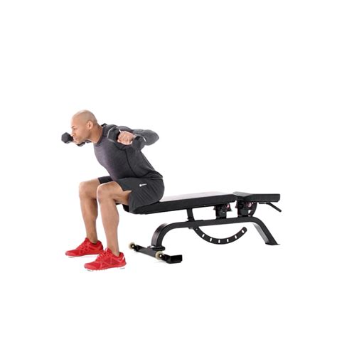posterior shoulder pain bench press posterior shoulder bench press seated rear lateral raise