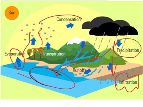 water diagram water cycle diagram 6th grade image collections how to