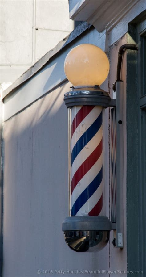 barber downtown charleston signs in charleston south carolina beautiful flower