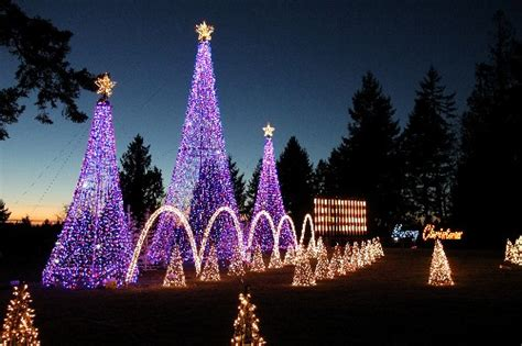 automated christmas light display electronic house
