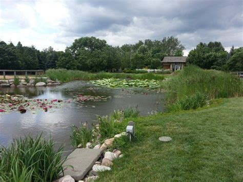 17 best images about reiman gardens on gardens