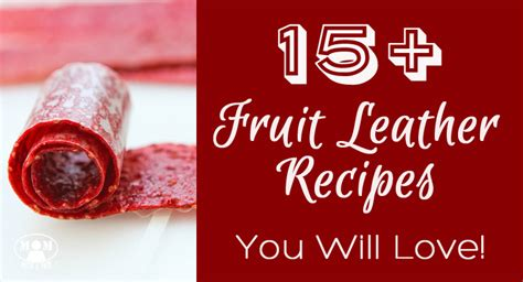 safe to 30 essential puree recipes for everyday books 15 fruit leather recipes you will with a prep