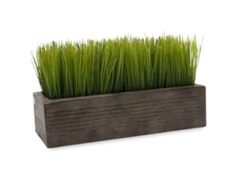 Wheatgrass Planter by Today S Fabulous Finds Rustic Wood Planter With Me
