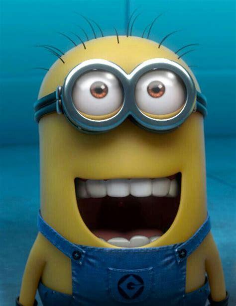 imagenes minions divertidas 94 mejores im 225 genes de minions en pinterest cosas