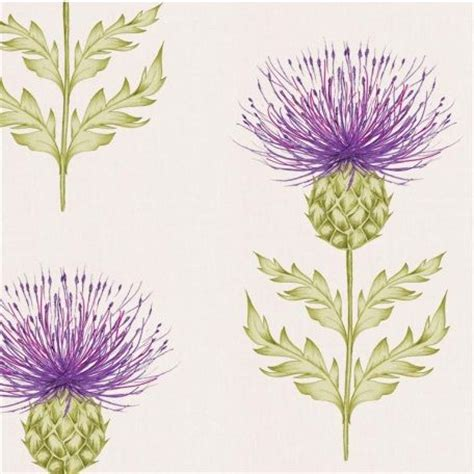 edinburgh tattoo flower of scotland scottish thistle wallpaper wallpaper paint colors