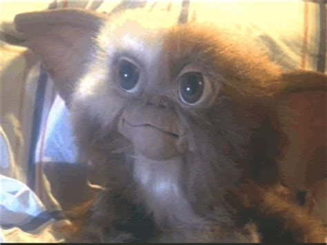 the world s best photos of gremlins and gremlins gif find on giphy