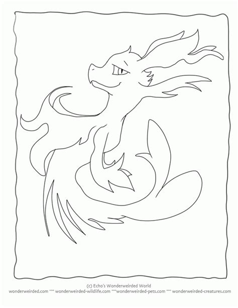 camouflaged animals coloring info pages allaboutnature com camouflage coloring pages kids coloring