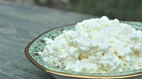 Health Benefit Of Cottage Cheese by What Are The Health Benefits Of Cottage Cheese Your