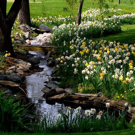 Backyard Brechin Backyard Brechin Opening Times 28 Images Backyard