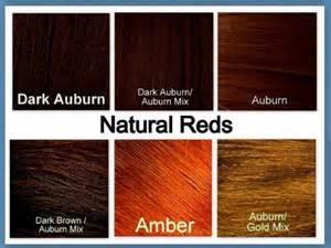 auburn hair color chart renaissance twist style wig hairpiece headband