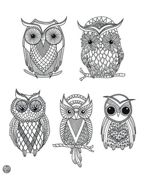 Colorama Coloring Book Owl