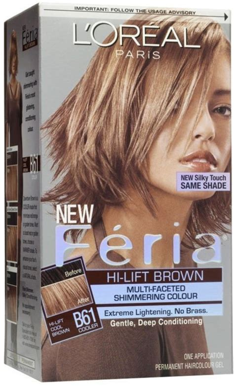 loreal feria hair color chart best 25 feria hair color ideas on how to dye