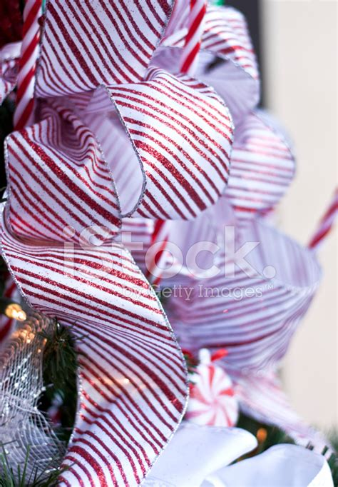 outdoor candycane ribbon ribbon tree decorations stock photos freeimages