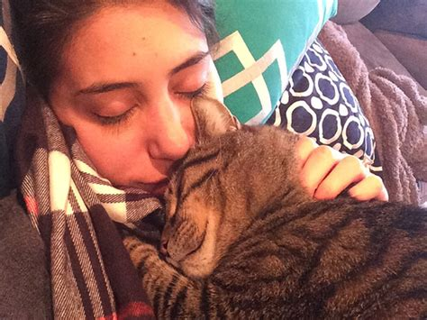 how to comfort a sick cat cuddling with your cat when you are sick may be just what