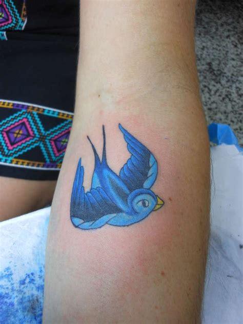 Tattoo Studio Yeppoon   bluebird by lex collins at yeppoon tattoo studio
