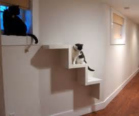 building cat shelves cat ladder crafts to try