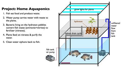 aquaponics diagram aquaponics system diagram images