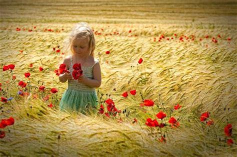 al grano y sin ci di grano nel mio angolo di cielo