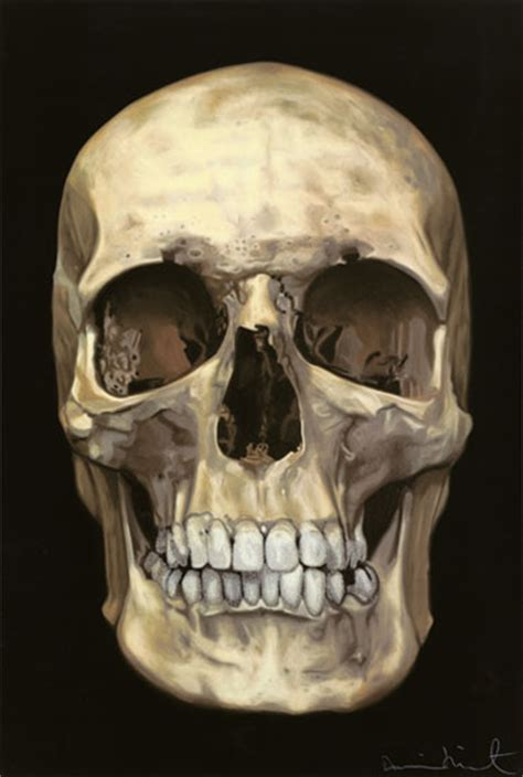 american skulls have significantly gotten larger in the