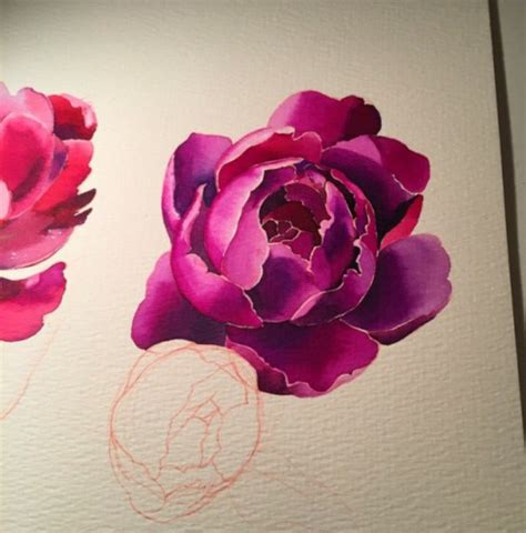 watercolor tattoo peony watercolor peony if my can do this