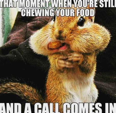 Funny Call Center Memes - 27 of the best call center memes on the internet the