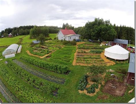 a look at charlotte s many community gardens backyard permaculture permaculture design offers a
