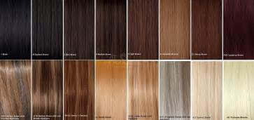 hair extensions colors human hair color chart color ring brown hairs