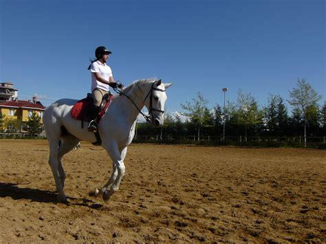 commercial girl riding horse file girl riding horse 1040397 nevit jpg wikimedia commons