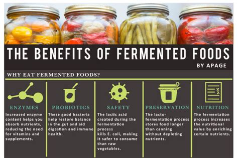 E Book Fermented Food For Health econugenics part 3